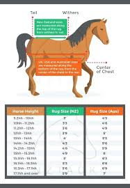rug sizes chart horse cover sizing chart how to choose the right rug for your horse rug sizes