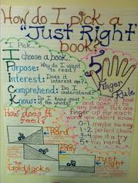 Just Right Book Chart Lessons Tes Teach