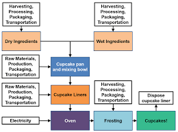 Plant Life Cycle Flow Chart Mmm Cupcakes Whats Their Life Cycle Impact Activity