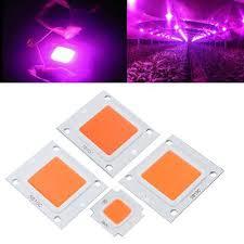 5pcs 10 20 30w led cob grow light