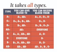 Different Blood Types Chart Blood Types New York Blood Center