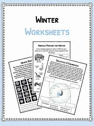Winter Facts, Information & Worksheets For Kids | Teaching Resource