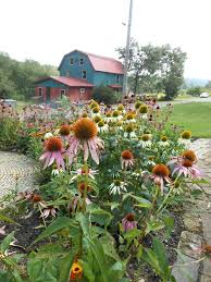 Quiet Creek Herb Farm and School of Country Living - About | Facebook