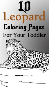 Baby Leopard Coloring Pages Baby Snow Leopard Coloring Pages
