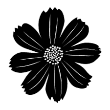 コスモスの花の無料イラスト素材イラストイメージ