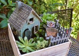 fairy gardens box