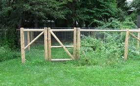 dog fence outside