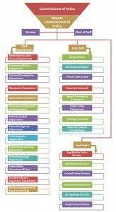 Law Enforcement Hierarchy Chart Singapore Police Force Hierarchy Hierarchy Singapore
