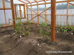 amazing build a glasshouse greenhouse supplies and building material glass or poly greenhouse with diy greenhouse plans
