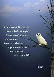 Spiritual Quotes About Love Top 100 Spiritual Love Quotes Sayings by Rumi 78