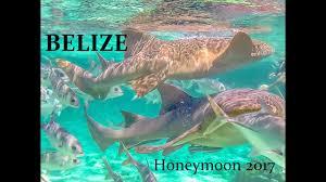 Belize Honeymoon 2017 San Pedro/Hopkins - YouTube