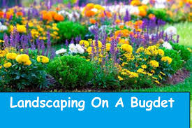 How to Landscape | Flower Landscaping on a Budget