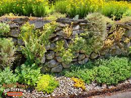 garden ground cover. STEPABLES Rock Wall2016413, Assorted All Terrain Ground Cover Wall2016407 Garden