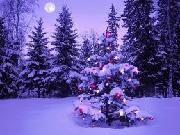christmas tree wallpaper widescreen. Merry Christmas Tree Wide Screen Wallpaper And Widescreen
