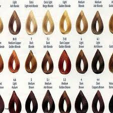 28 Albums Of Loreal Inoa Hair Color Chart Explore