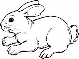 Print and color easter pdf coloring books from primarygames. Easter Bunny Coloring Pages North Texas Kids Easter Bunny Colouring Animal Coloring Pages Bunny Drawing