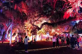 shine bright like an illuminated tree