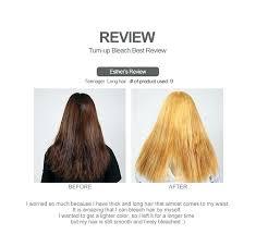 Hair Bleach Level Chart Bleached Hair Color Silkscreening Me