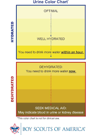 Urine Specific Gravity Chart How To Monitor Your Urine Hydration Status Itechsoul