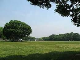 大泉 緑地 公園
