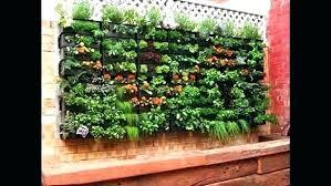 balcony herb garden patio ideas for apartment herbs create conta balcony garden kit patio herb