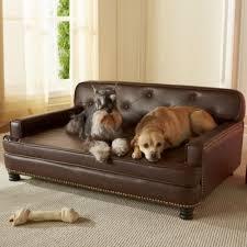 Enchanted Home Pet Library Sofa Dog Bed Dog