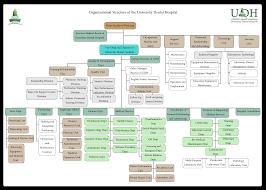 University Dental Hospitsl The Organizational Structure Of