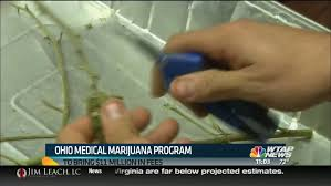 Medical People Ohio Pot 30k Than To Register Update More Buy