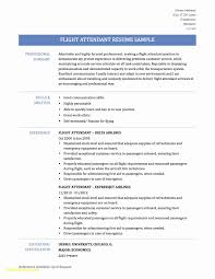 Sample Resume For Flight Attendant Resumer Flight Attendant Position Examples Jobs With No