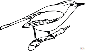 Small Picture Perched Robin coloring page Free Printable Coloring Pages