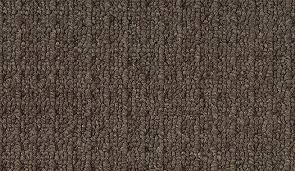 How to choose Carpet Carpet ing tips Tekmark