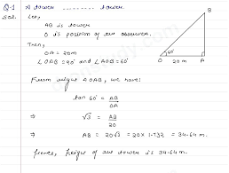 full size of maths exercises class 10 sums for ssc worksheets pdf height and distance ex