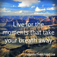 Grand Canyon Quotes New Quotes About Grand Canyon 48 Quotes