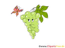 Weintrauben Clipart 2 Clipart Portal