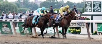 2013 Belmont Stakes Results Chart Belmont Stakes Winner Exacta Trifecta Superfecta