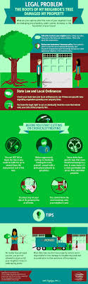 The Roots of my Neighbor\u0027s Tree are Damaging my Property (Infographic)