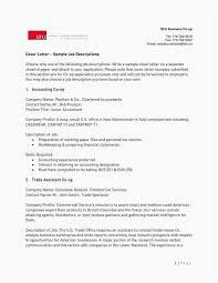 Financial Statement Cover Letter Simple Financial Statement Template And 20 Best Resume