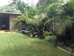Small Picture Tropical Oasis Garden Northern Beaches Balinese Style