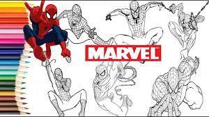 Siêu Nhân Người Nhện - Tô Màu Siêu Nhân Nhện Các Màu- Dạy Vẽ Cho  Bé//Coloring spider man | Tổng hợp những bức tranh tô màu đẹp nhất - Kênh  nhạc ru