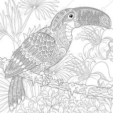 Small Picture Adult Coloring Pages Toucan Zentangle Doodle Coloring Pages for