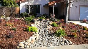 Small Picture Drought Tolerant LandscapesDrought Gardening Dry Stream Bed