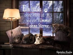 Ein Haus Ohne Tiere Ist Wie Ein Himmel Ohne Sterne Sprüche Suche