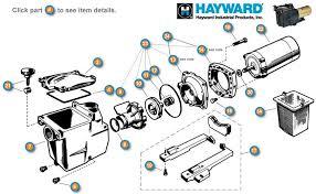 hayward pool pumps wiring diagrams wirdig wiring diagram together a o smith pool motor wiring diagrams