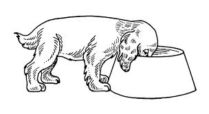 Cani Immagine Da Colorare N 26461 Cartoni Da Colorare
