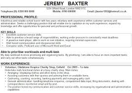 7 Cv Profile Example Student Theorynpractice
