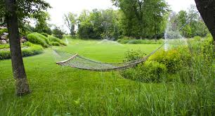 Image result for experience with the lawn sprinkler company