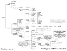 Chronicles Genealogy Chart Lineage Of Asher Joseph Bible Study Notebook Hebrew