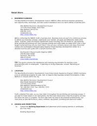 Online Storesiness Plan Example Download Sample Resume