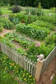 Small Picture Entrancing Vegetable Garden Design Ideas Concept For Fireplace
