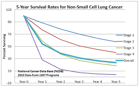 Stage 4 Lung Cancer Survival Rate Ca 30 Resultater Survival Rate Of Stage 4 Lung Cancer That Has Spread